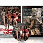 Swinging Barmaids